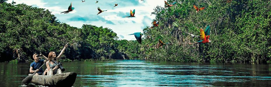 Iquitos renace